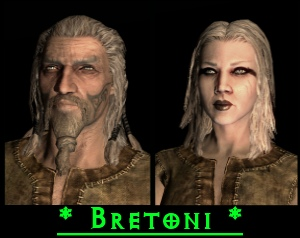 Bretoni skyrim
