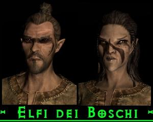 elfi dei boschi skyrim