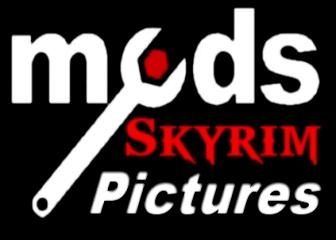Skyrim Banner 1