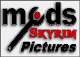 Skyrim Banner 2